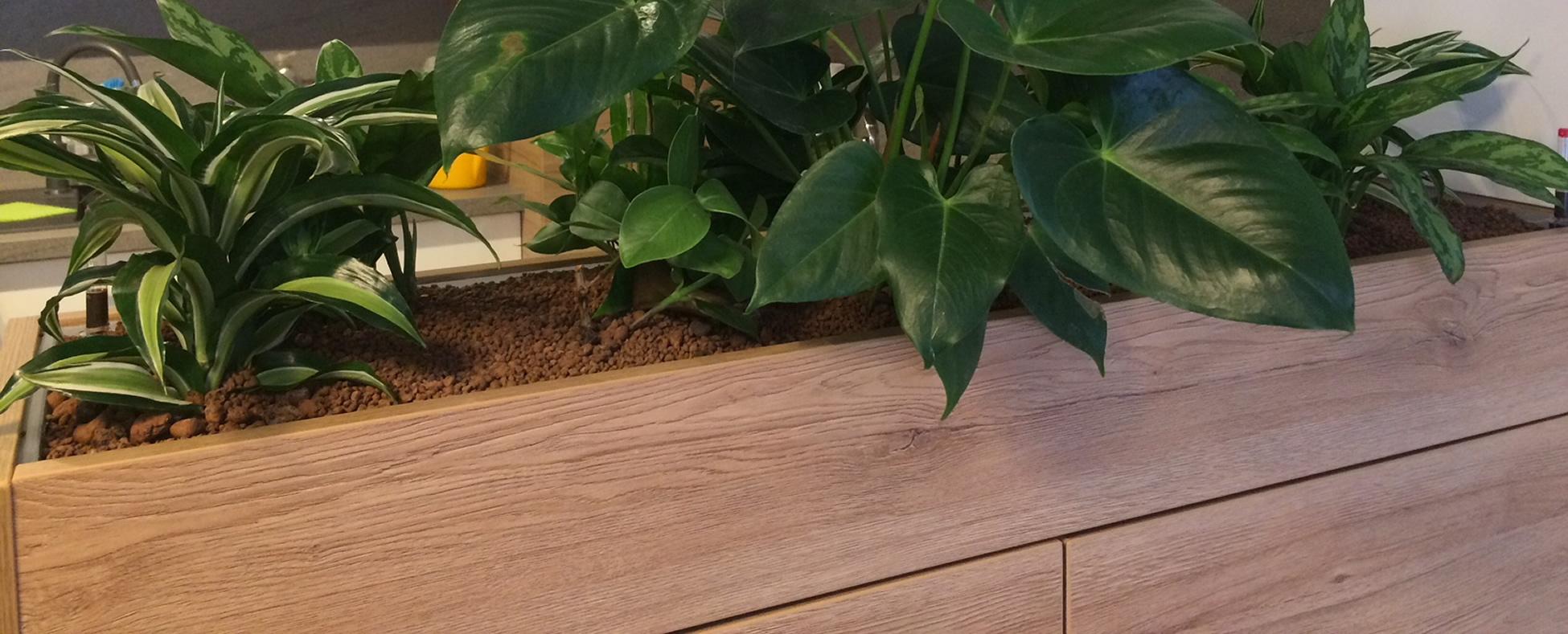 Truhlíky a květníky na zakázku